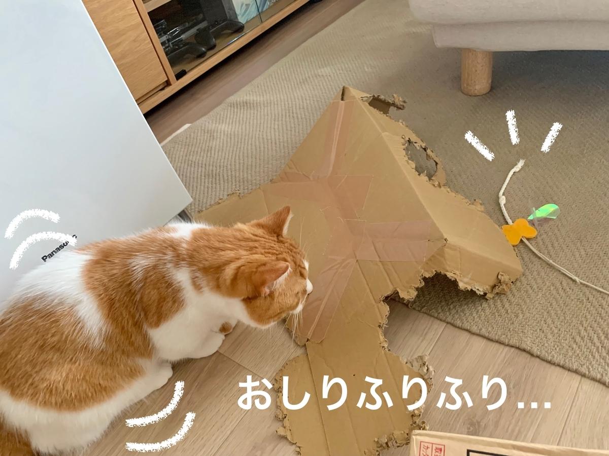 紙紐のおもちゃとるるちゃん3
