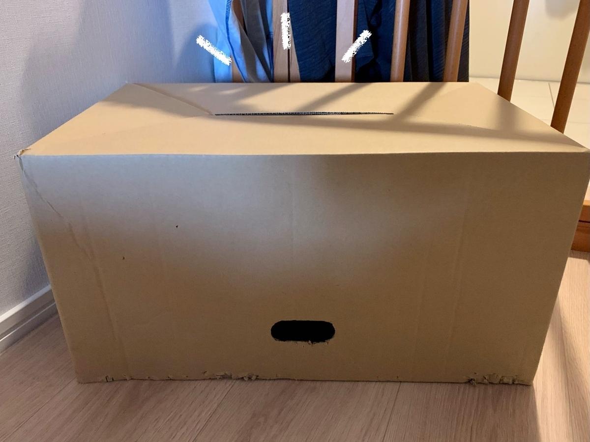 箱の中のるるちゃん1