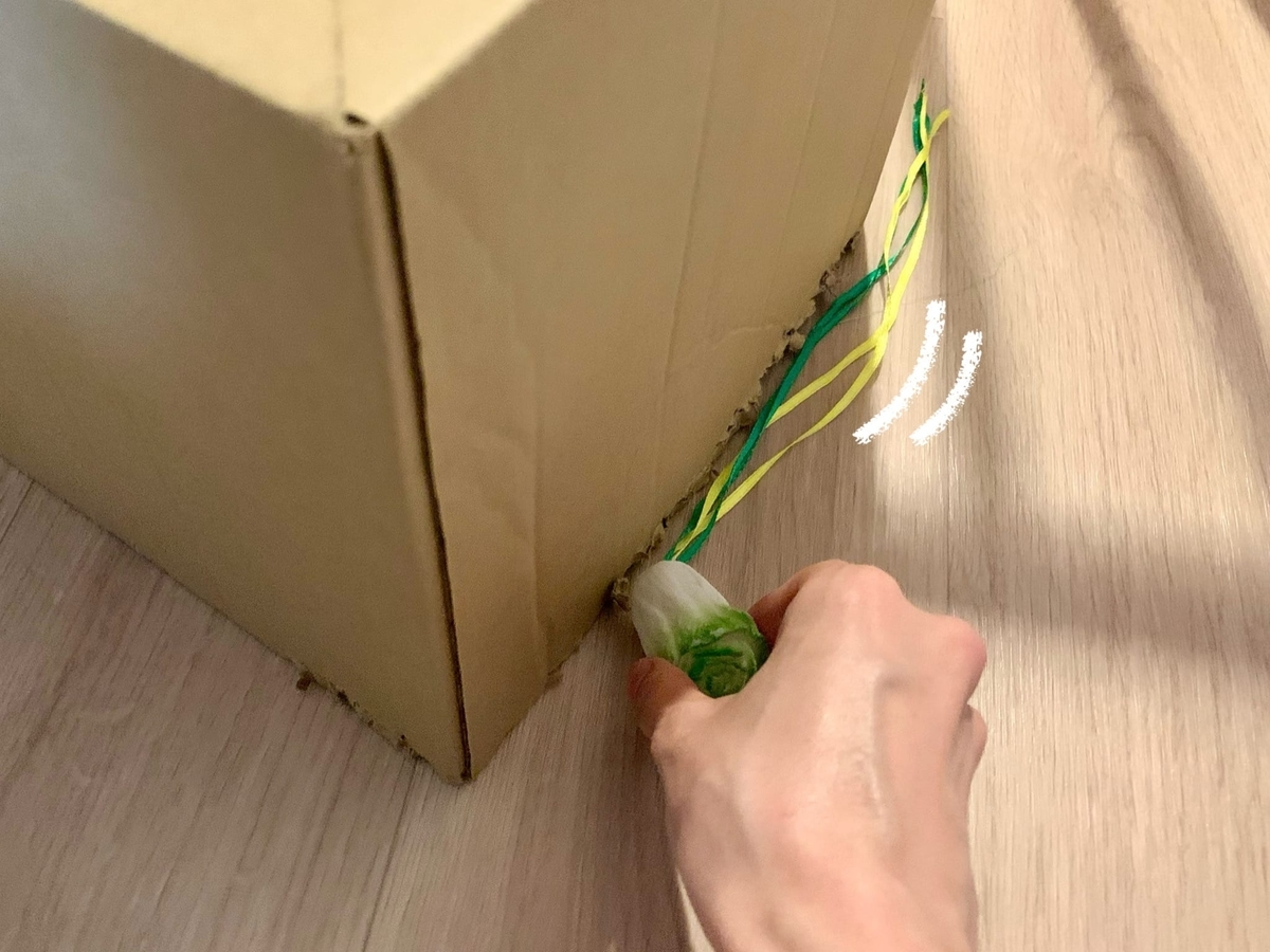 箱の中のるるちゃん2