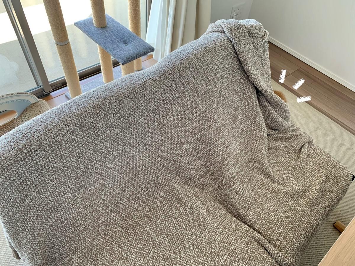 ソファの中に潜むるるちゃん1