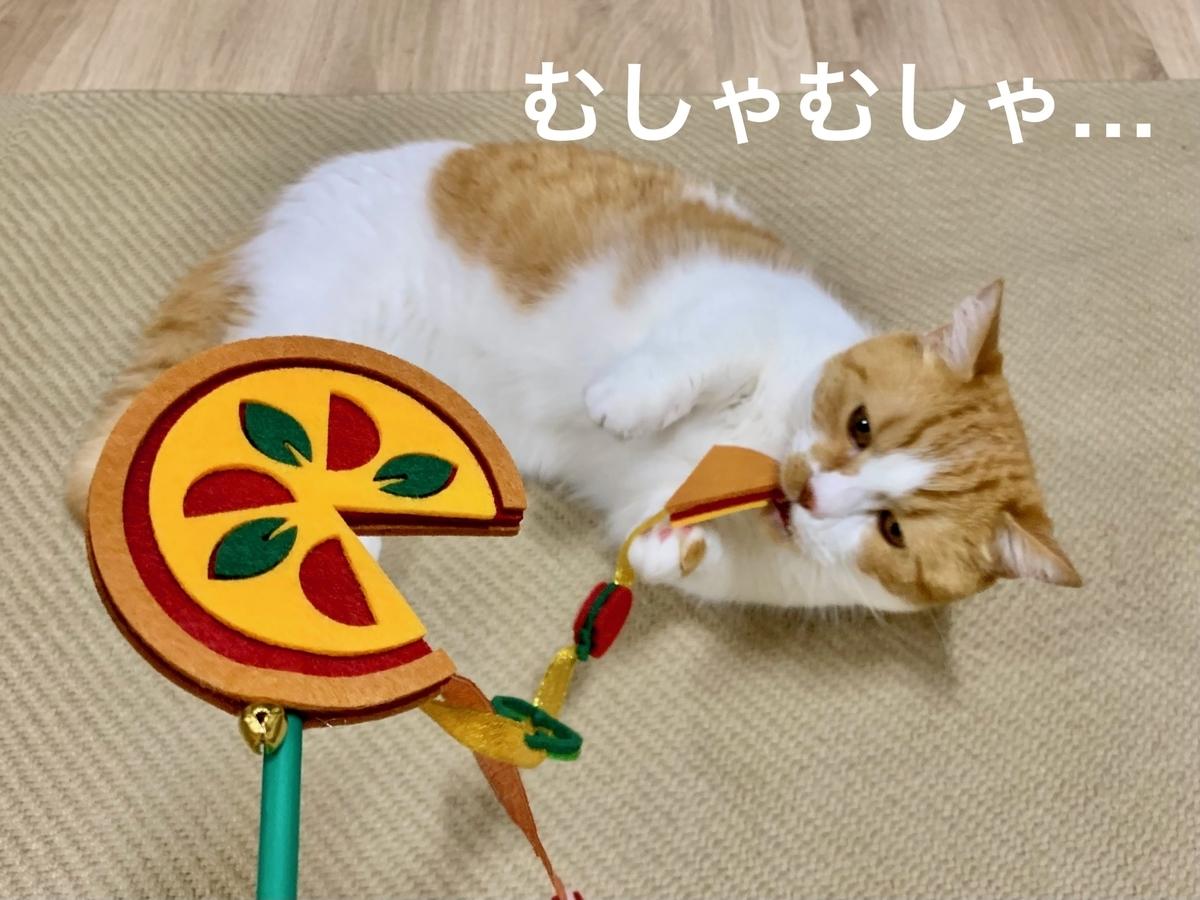awesome storeの猫じゃらしで遊ぶるるちゃん3