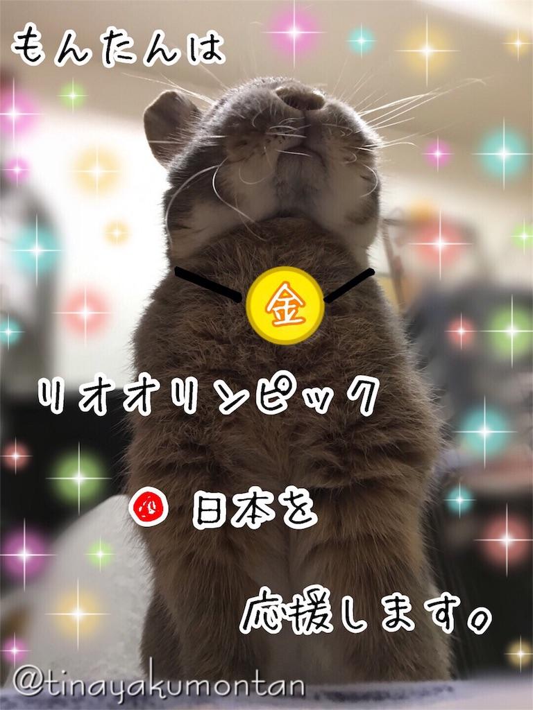 f:id:tinayakumontan:20160807220224j:image