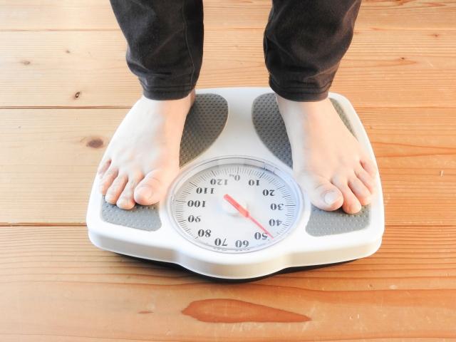 葛の花イソフラボンの体脂肪減らす効果