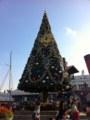 10周年クリスマスツリー