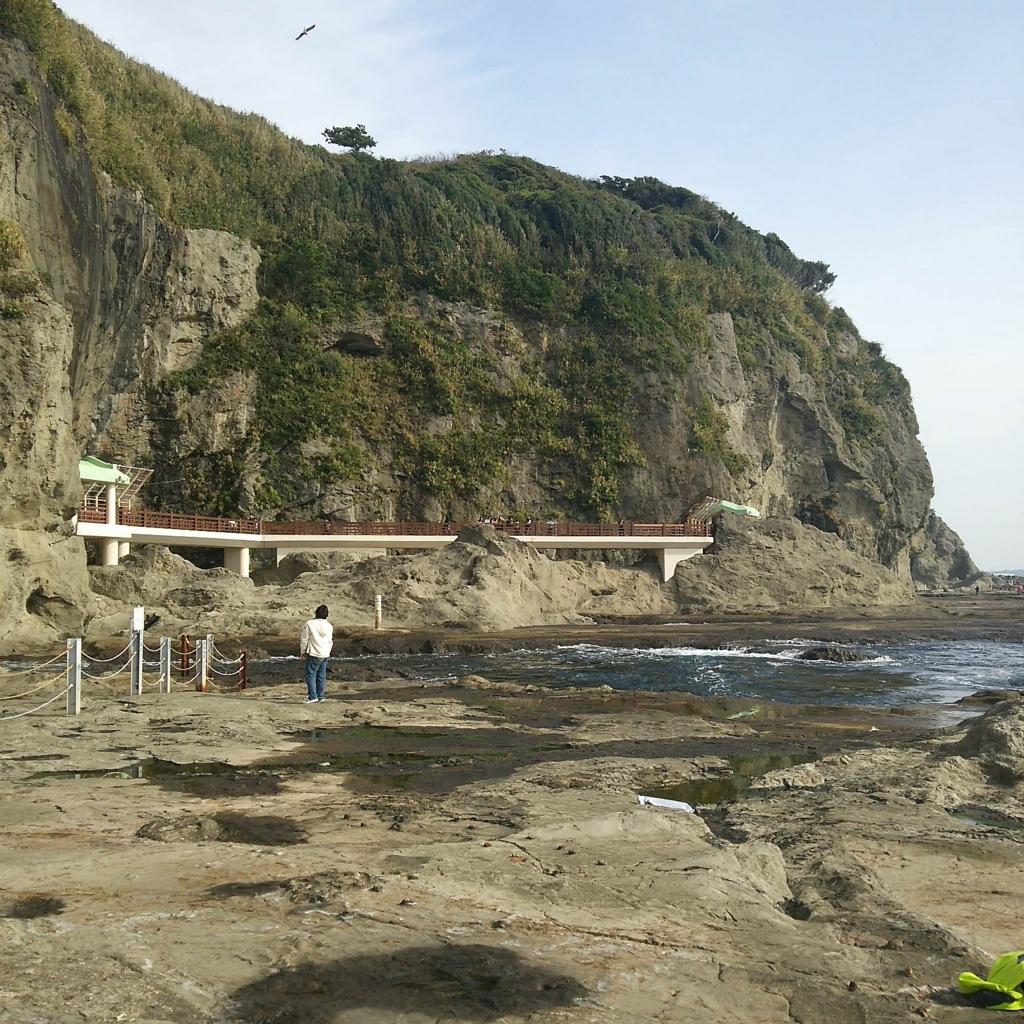 江ノ島 パワースポット 龍 御朱印パワースポット巡りで開運!神社で心からの感謝