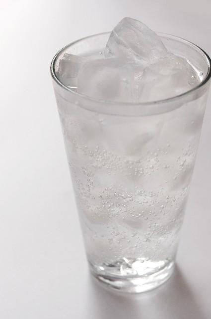 04 チャーガ チャーガ成分/ミネラル・ベツリン酸・トリテルペンの効果効能副作用