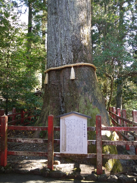 箱根神社 ご利益 御朱印