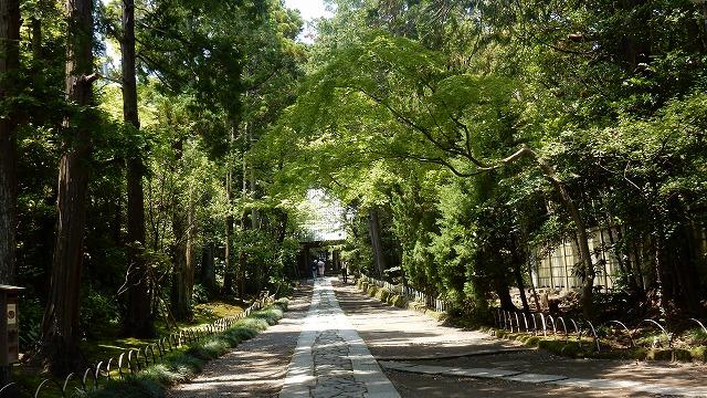 鎌倉三十三観音巡り ご朱印 ご利益 壽福寺 寿福寺 地図 時間 行き方 アクセス