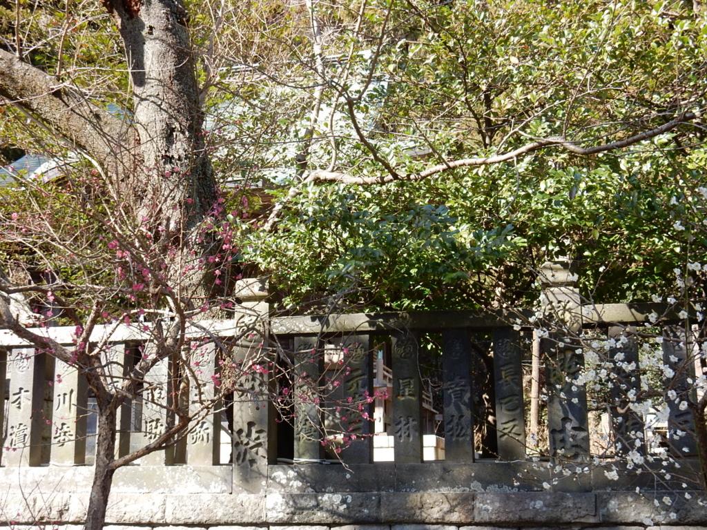 06  鎌倉 ウメ 梅 巡り kamakura 2月の鎌倉はオススメ梅の見所一杯!梅見がてらの鎌倉ご朱印ご利益参拝