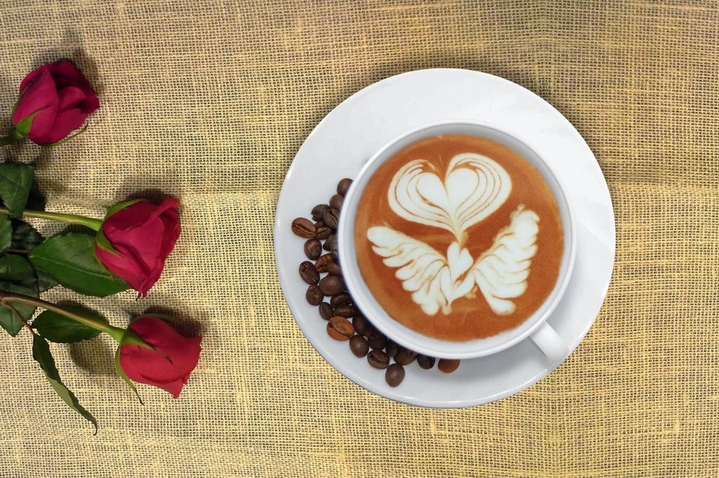 お茶 βグルカン 効果 効能 チャーガ茶(和名カバノアタケ)の成分/βグルカンの効果効能副作用