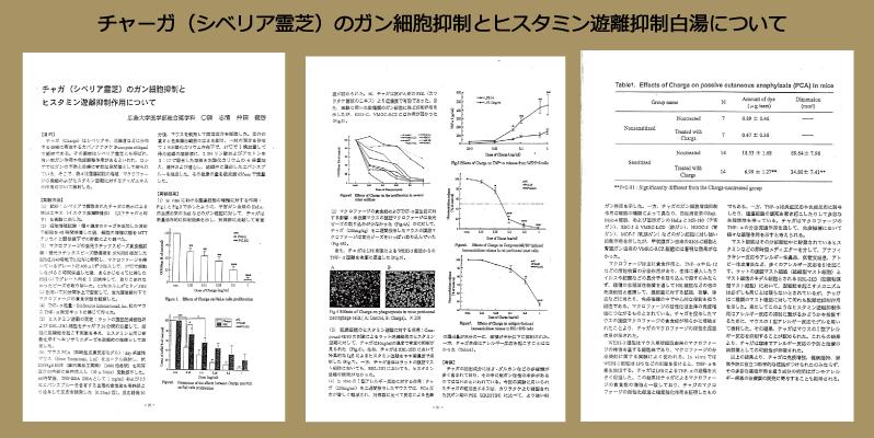 チャーガ ガン 免疫 抗酸化 エビデンス2