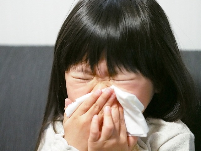 花粉症10 花粉症 チャーガ チャーガ茶 ヒスタミン 抗酸化作用
