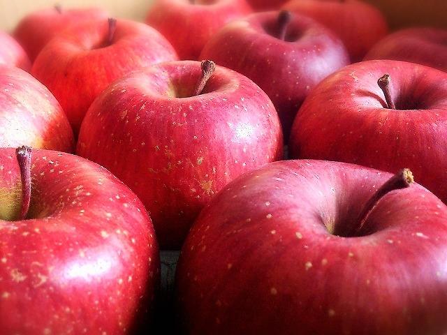 09  食生活改善 免疫 健康 食生活改善は思い込みを捨てること?免疫力維持が大切!