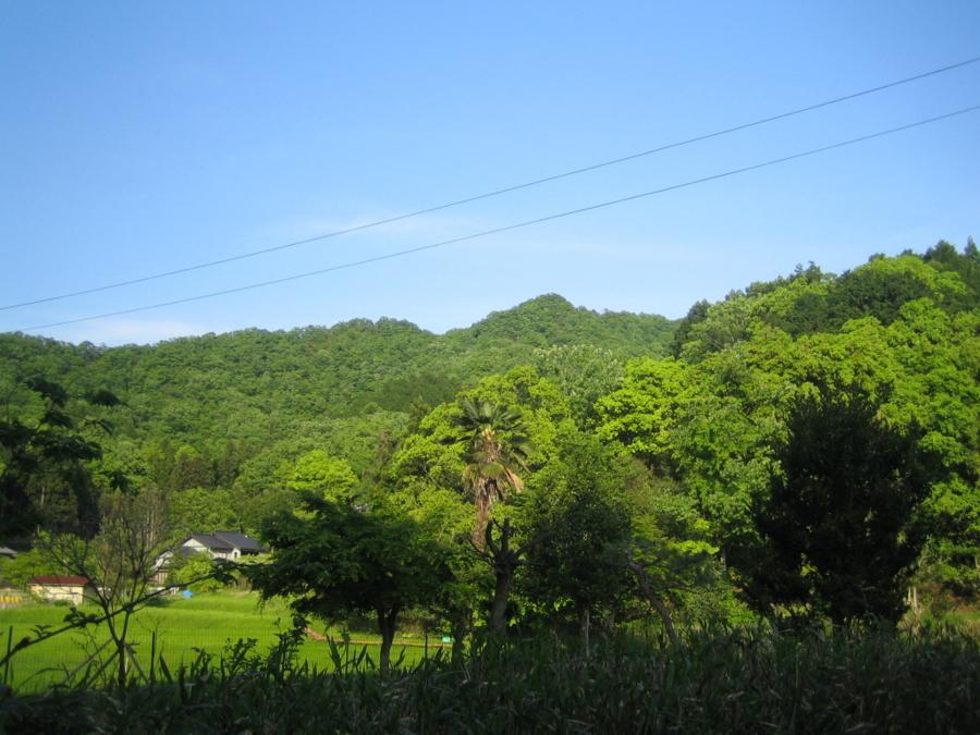 f:id:tirorinmura:20120513205719j:image