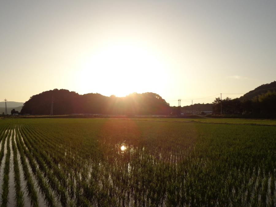 f:id:tirorinmura:20130616210640j:image