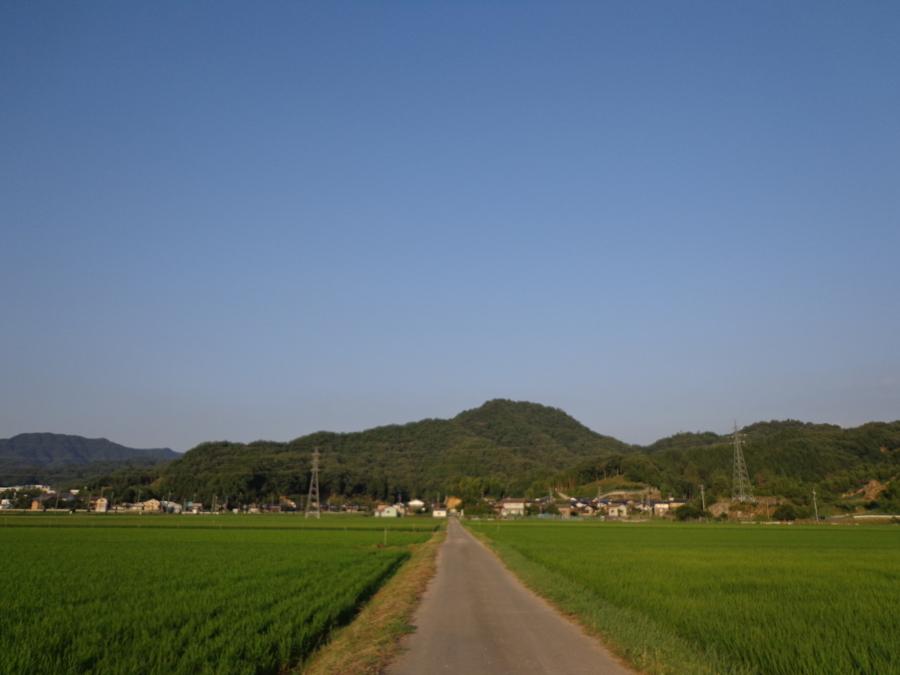 f:id:tirorinmura:20130709080036j:image:w280:left