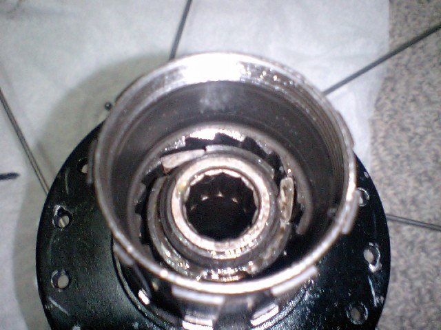 20090519.JPG