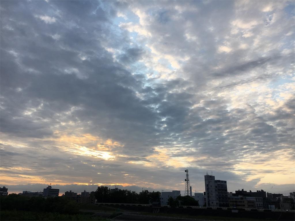 f:id:tiyotiyoyachiru:20170628234450j:image