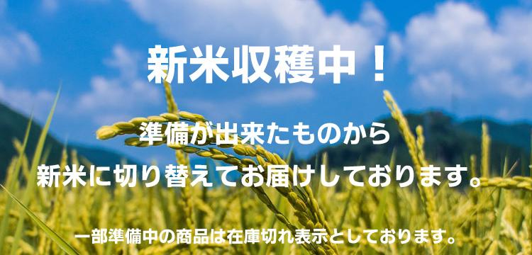 f:id:tk_maeda:20181005214909j:plain