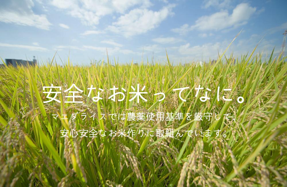 f:id:tk_maeda:20210131072322j:plain