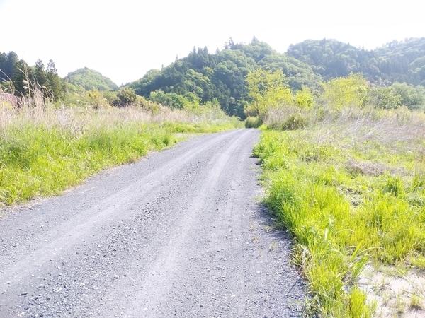 上小川キャンプ場