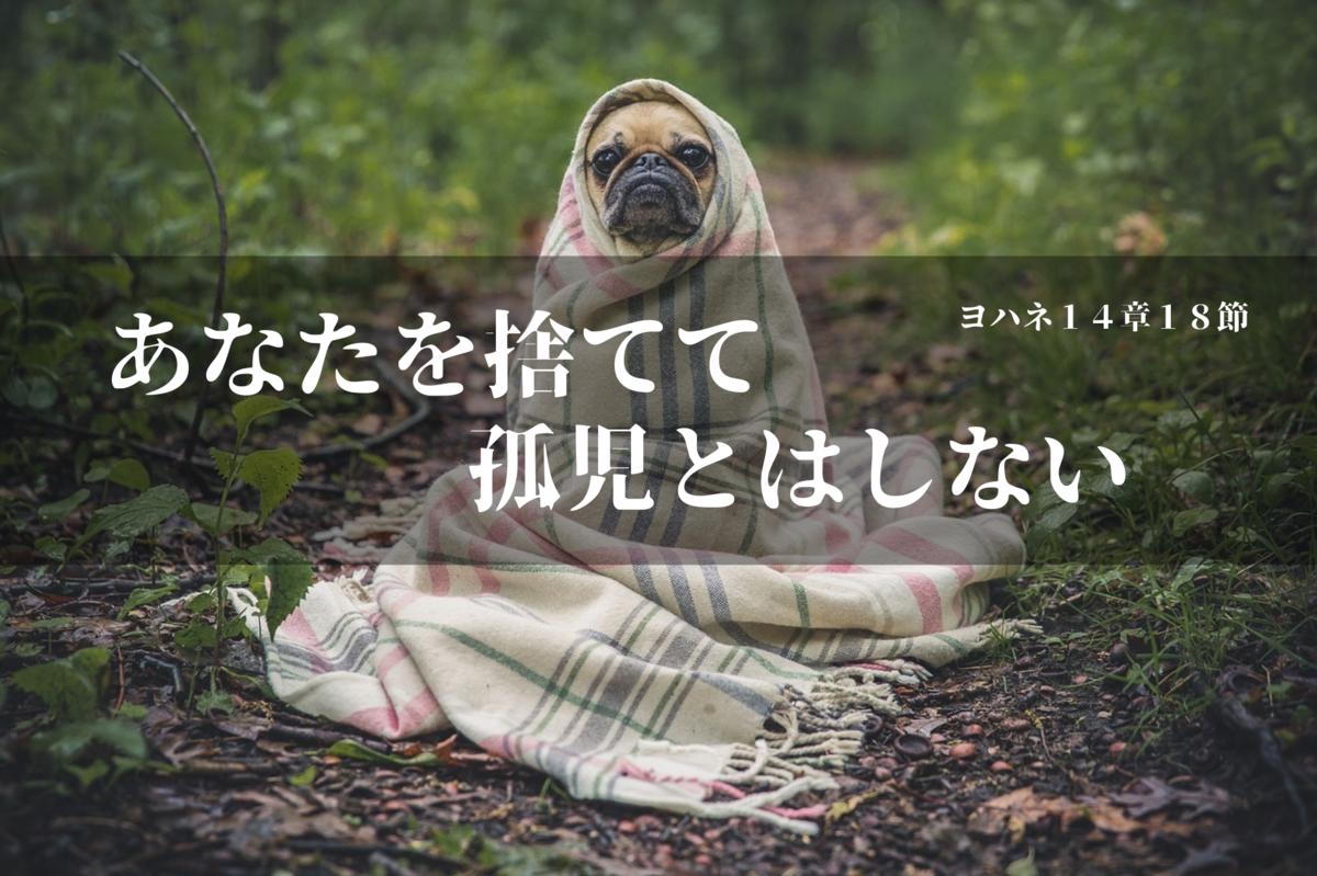 f:id:tkoki777:20190903205919p:plain