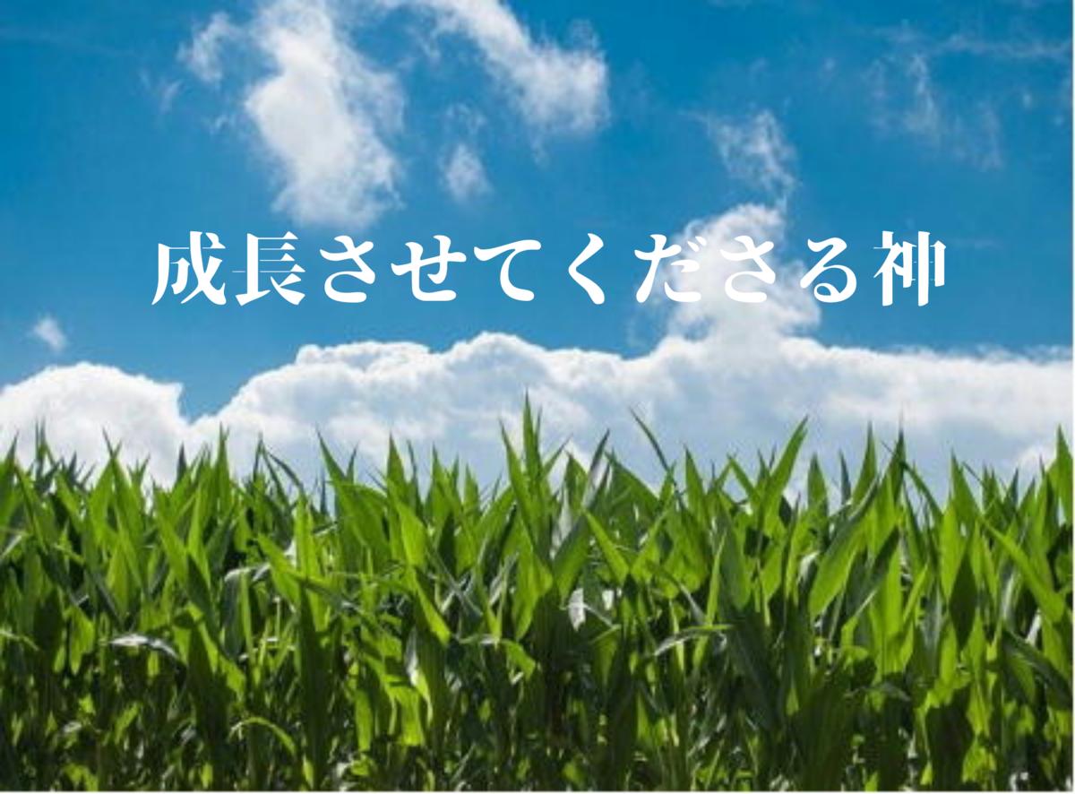 f:id:tkoki777:20200130182101p:plain