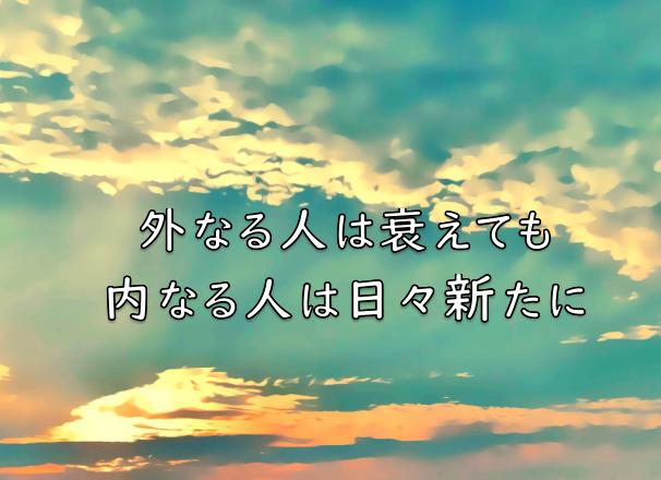 f:id:tkoki777:20200531230927p:plain