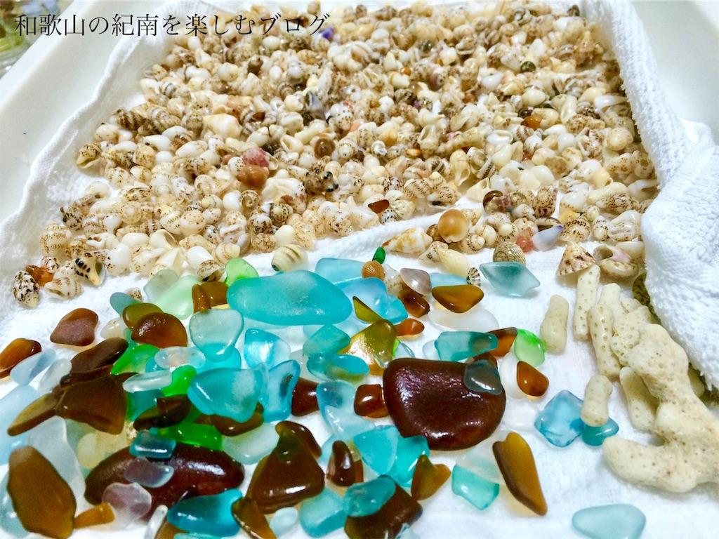 番所山の貝殻とシーグラス