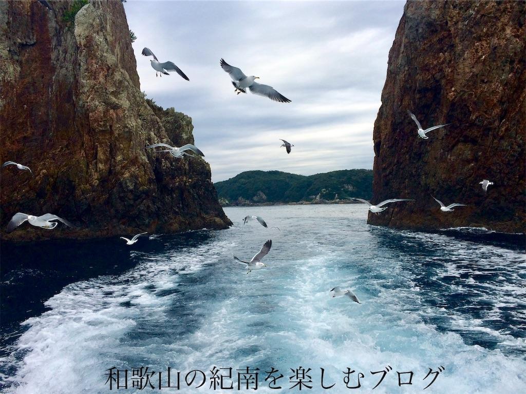 那智勝浦 紀の松島観光船 遊覧コース(3)