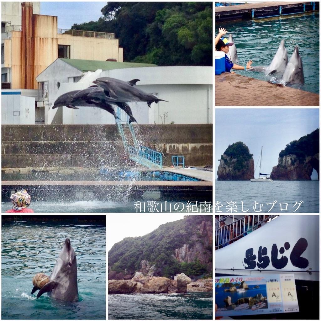 那智勝浦 紀の松島観光船 ドルフィンコース(2)