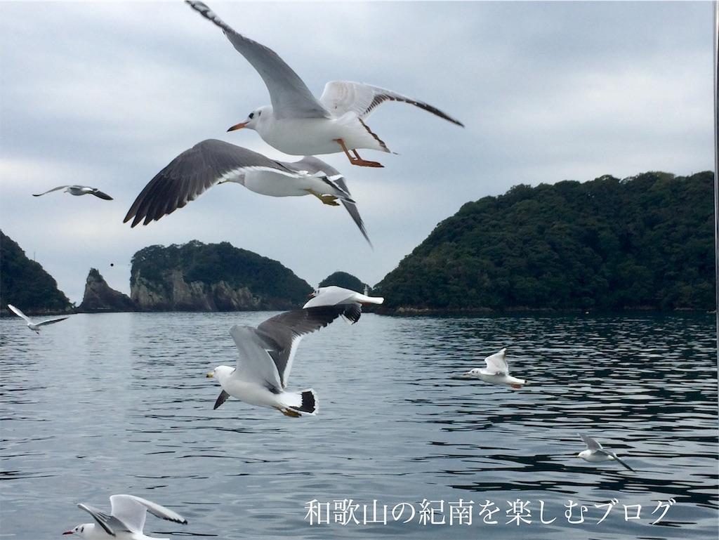 那智勝浦 紀の松島観光船 かもめ(1)