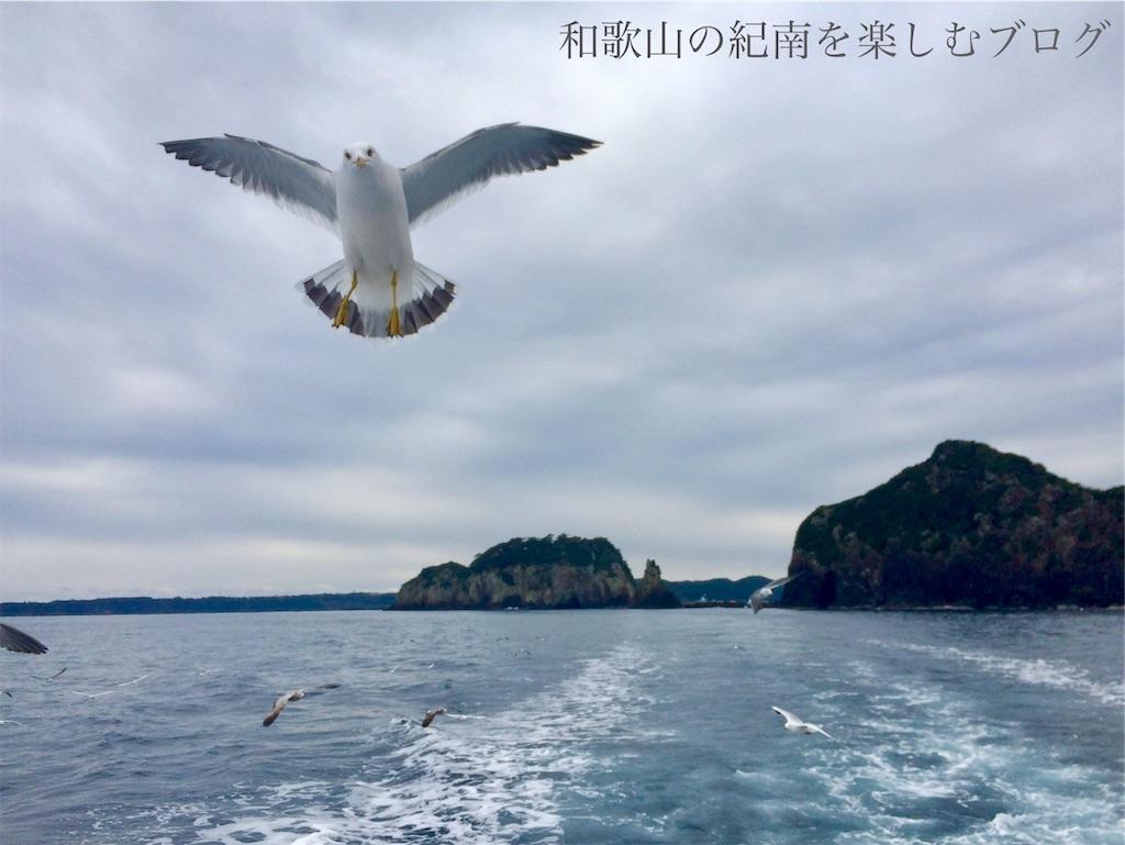 那智勝浦 紀の松島観光船 かもめ(4)