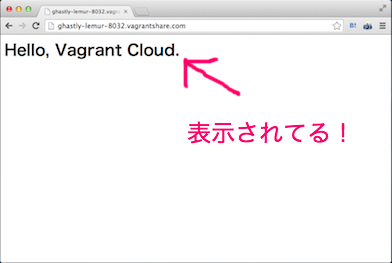 Vagrant Share Result
