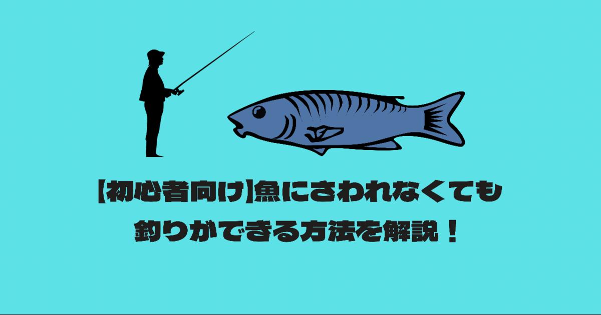 初心者 魚 さわれない 釣り