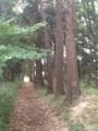 里山の抜け道