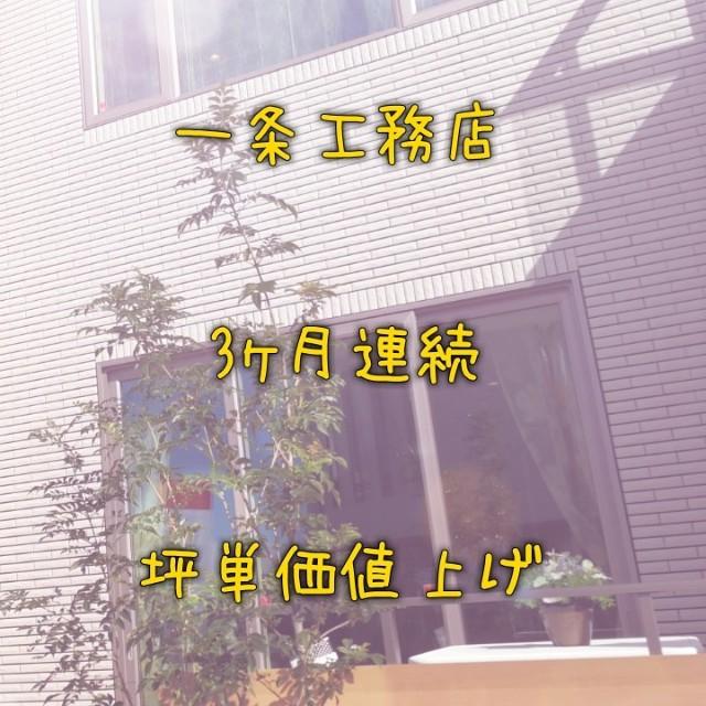 f:id:to-ichi:20180715194850j:plain