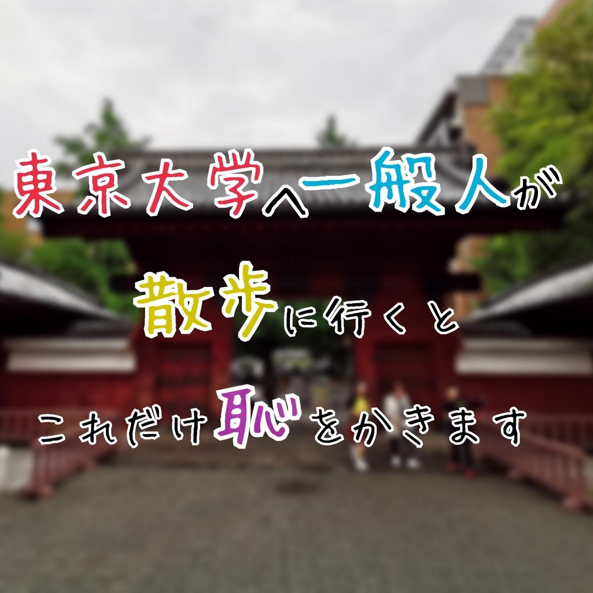 東京大学 一般人 散歩
