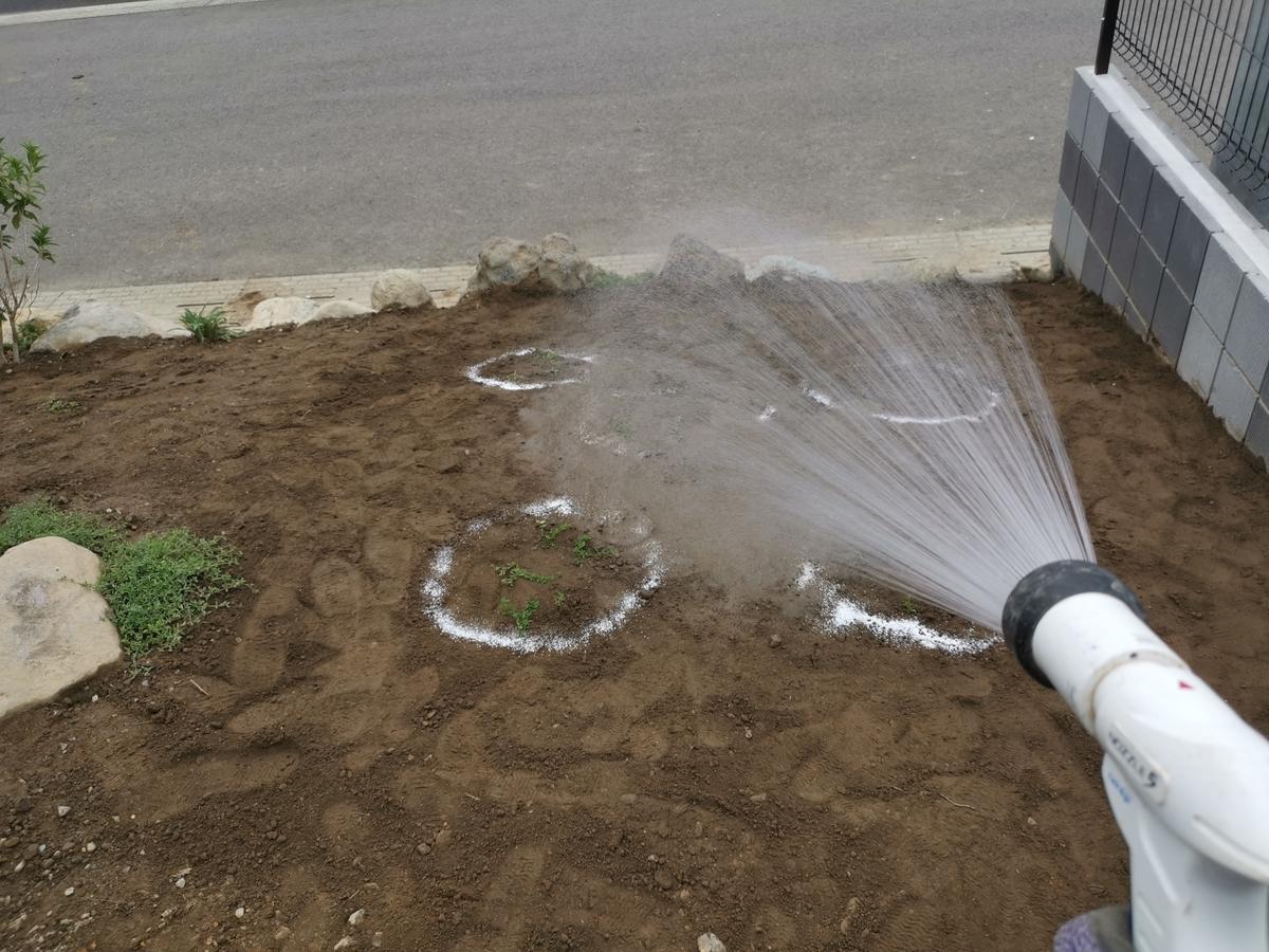 クリーピングタイムに追肥と水やり