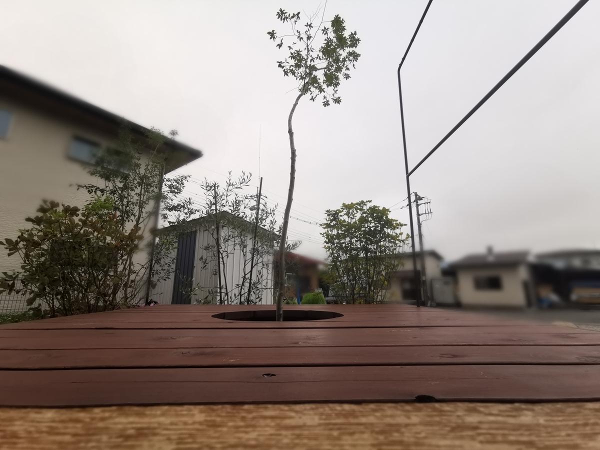 ウッドデッキとシンボルツリー