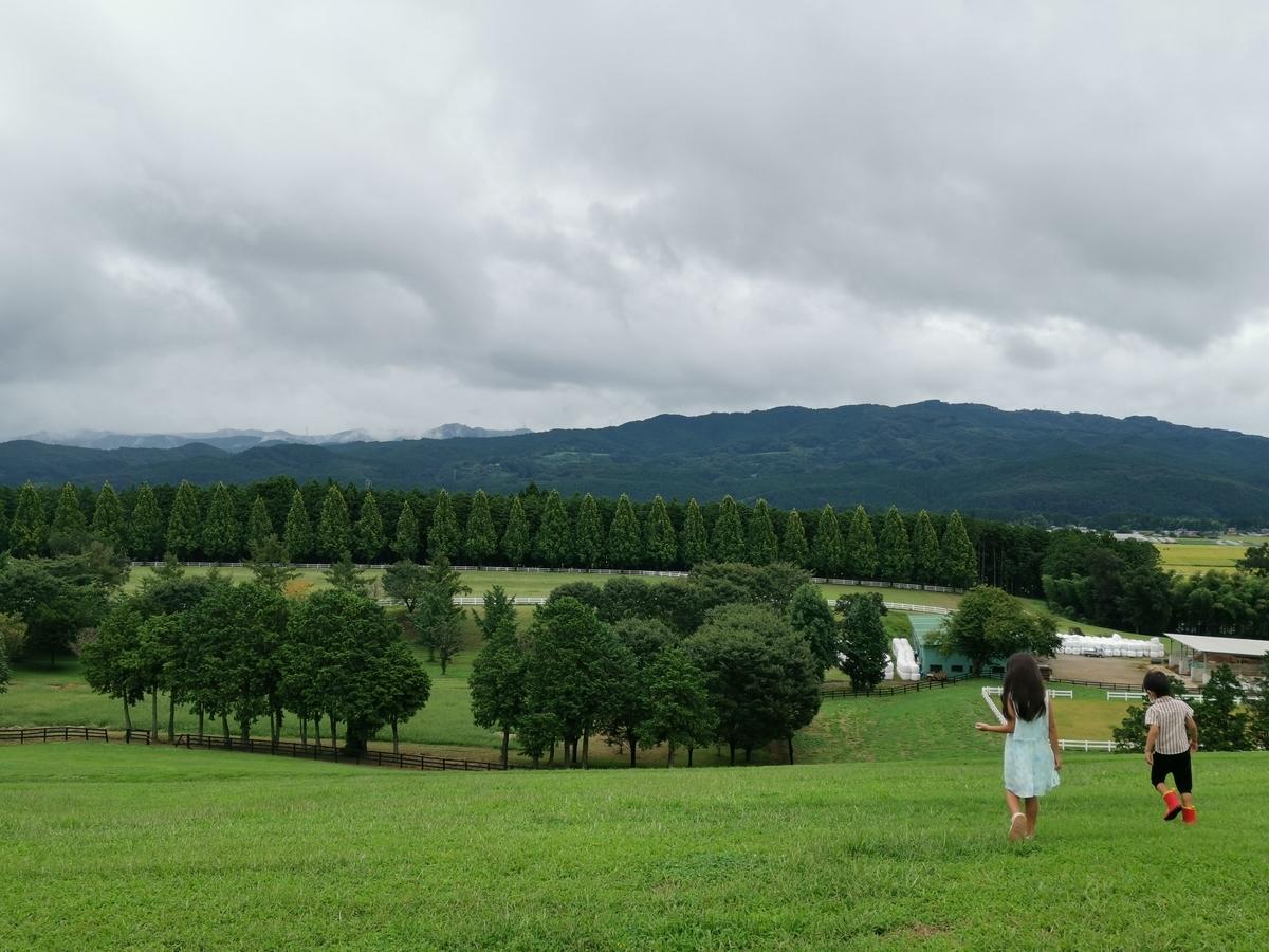 紗栄子の牧場ではしゃぐ子供たち