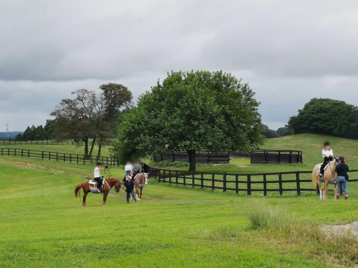 紗栄子の牧場で乗馬体験