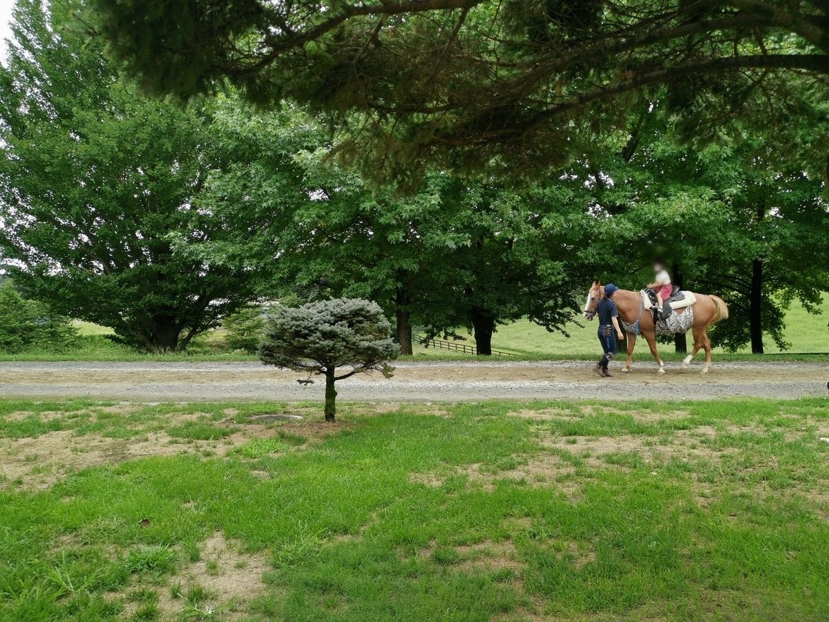 紗栄子の牧場で乗馬体験をする子供
