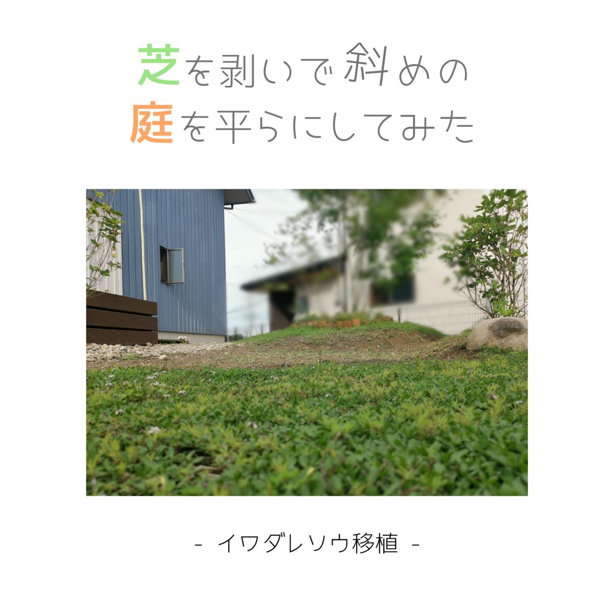 芝を剥いで斜めの庭を平にしてみた-イワダレソウ移植-