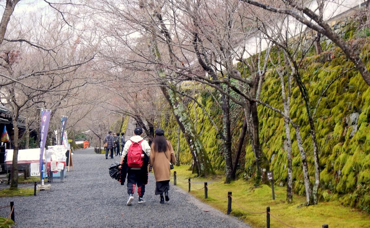 f:id:to-kyoto:20200114201035j:plain