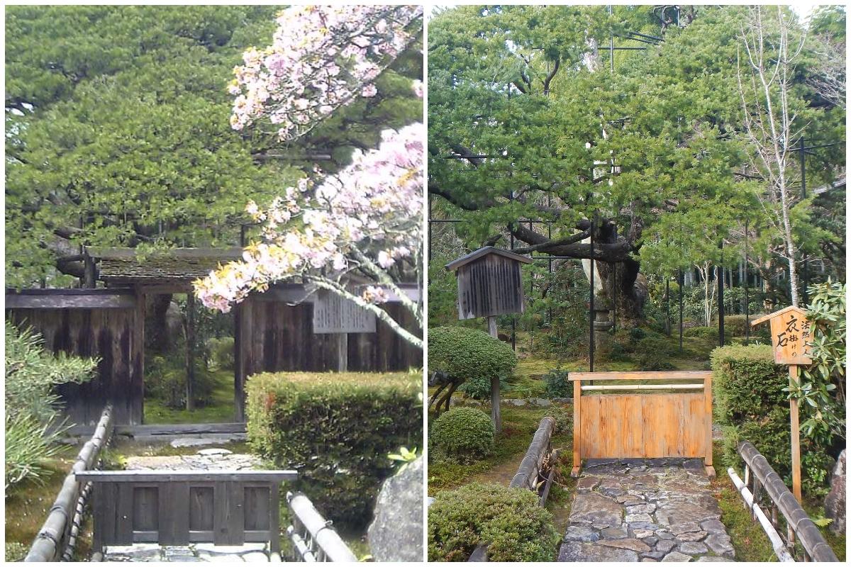 f:id:to-kyoto:20200115142532j:plain