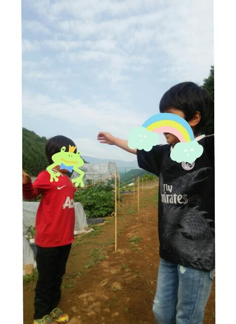 f:id:tobami:20160619211328j:plain