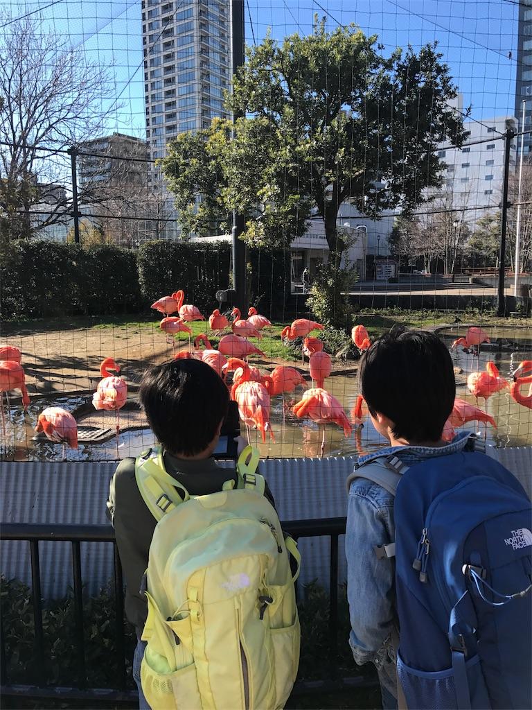 f:id:tobami:20180106073653j:image