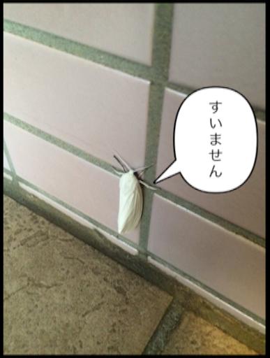 f:id:tobari3209:20160809210620p:image