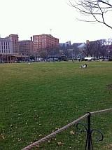 シェンリー・パーク 公園から見たホテル